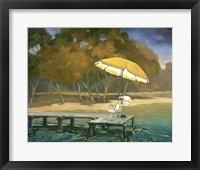 Evening Swim II Framed Print