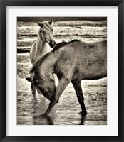 Framed Beach Horses I
