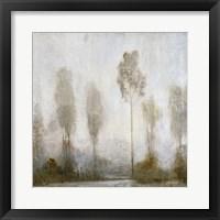 Misty Marsh II Framed Print