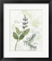 Framed Rosemary & Sage