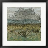 Arbor Shadow I Framed Print