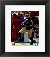 Framed Pierre Garcon with the ball 2013