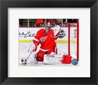 Framed Jimmy Howard Hockey Goal Tending