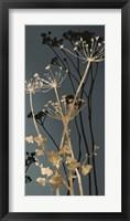 Framed Twilight Botanicals I