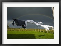 Framed Rainbow, Stormy Sky and Clothes Line, Bunmahon, County Waterford, Ireland