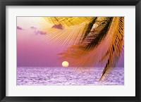 Framed Stylized tropical scene with violet sea, pink sky, setting sun and palm fronds