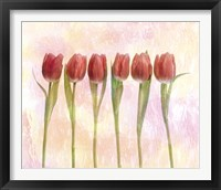 Framed Six pink tulips with green stems and leaves upright in front of pink plaster wall