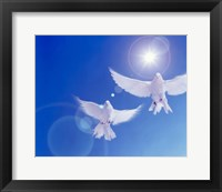 Framed Two doves side by side with wings outstretched in flight with brilliant light and blue sky