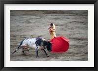Framed Matador and a bull in a bullring, Lima, Peru