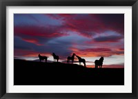 Framed Silhouette of horses at night, Iceland