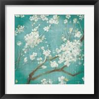 Framed White Cherry Blossoms I on Blue Aged No Bird