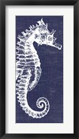 Framed Denim Washed Seahorse