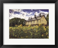 Framed Sunflower Garden