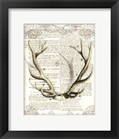 Framed Regal Antlers on Newsprint I