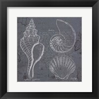 Coastal Blueprint I Framed Print