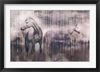 Framed Grey Serenade