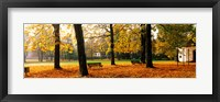Framed Park Bavaria Germany