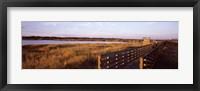 Framed Boardwalk in a state park, Myakka River State Park, Sarasota, Sarasota County, Florida, USA