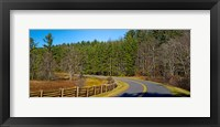 Framed Road passing through a forest, Blue Ridge Parkway, North Carolina, USA