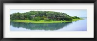 Framed Trees at Rachel Carson Coastal Nature Preserve, Beaufort, North Carolina, USA