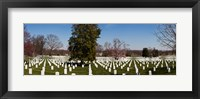 Framed Headstones in a cemetery, Arlington National Cemetery, Arlington, Virginia, USA