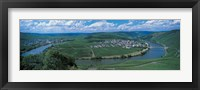 Framed Vineyard Moselle River Germany