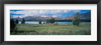 Framed Tekapo Lake South Island New Zealand