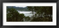 Framed Volcanic lake in a forest, Kawah Putih, West Java, Indonesia