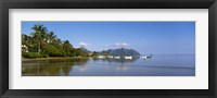 Framed Palm trees at a coast, Kaneohe Bay, Oahu, Hawaii, USA