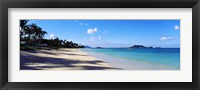 Framed Palm trees on the beach, Lanikai Beach, Oahu, Hawaii, USA