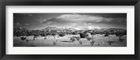 Framed High desert plains landscape with snowcapped Sangre de Cristo Mountains in the background, New Mexico (black and white)