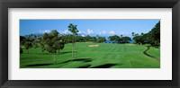 Framed Trees , Kaanapali Golf Course, Maui, Hawaii, USA