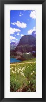 Framed Beargrass with Grinnell Lake in the background, US Glacier National Park, Montana