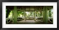 Framed Canopy in the botanical garden, Jardim Botanico, Zona Sul, Rio de Janeiro, Brazil