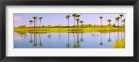 Framed Reflection of trees on water, Lake Worth, Palm Beach County, Florida, USA