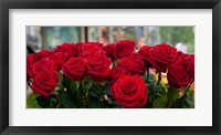 Framed Close-up of red roses in a bouquet during Sant Jordi Festival, Barcelona, Catalonia, Spain