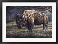 Framed Spirit Of The Plains (Bison)