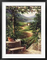 Framed Chianti Vineyard