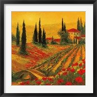 Framed Poppies of Toscano I
