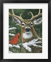 Deer With Cardinal Framed Print