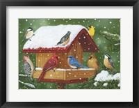 Framed Backyard Birds, Holiday Treats