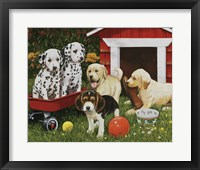 Framed Puppy Playmates