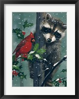 Framed Raccoon - winter