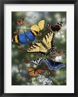 Framed Flying Flowers