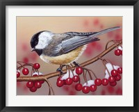 Framed Chickadee With Berries