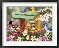 Framed Backyard Birds Spring Feast