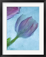 Framed Flowers on Ice-2