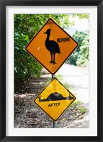 Framed Warning sign at the roadside, Cape Tribulation, Queensland, Australia