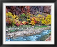 Framed Virgin River and rock face at Big Bend, Zion National Park, Springdale, Utah, USA