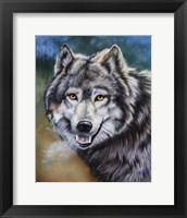 Framed Grey Wolf